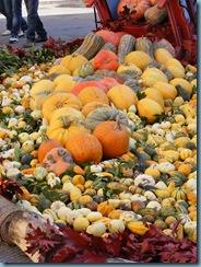 pumpkin festa 020