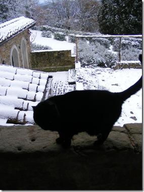 March snow 016