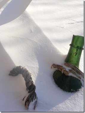 snow 2012 038