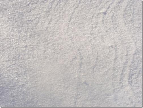 snow 2012 039