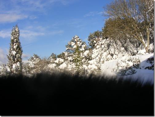 snow 2012 047