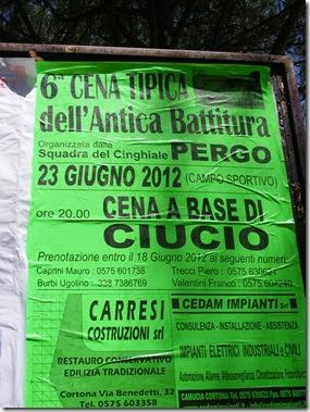 posters june 2012 001