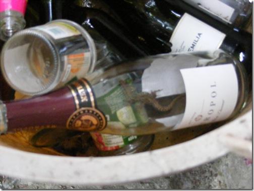 pieve al toppo wine festa 001