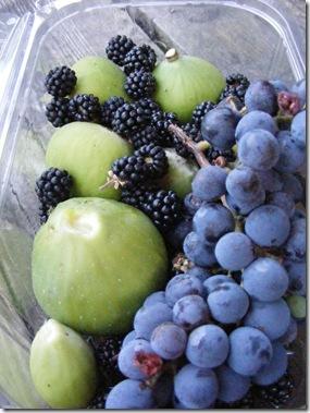fruit and ironing 004