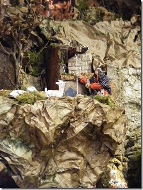 okra, fall2012 035