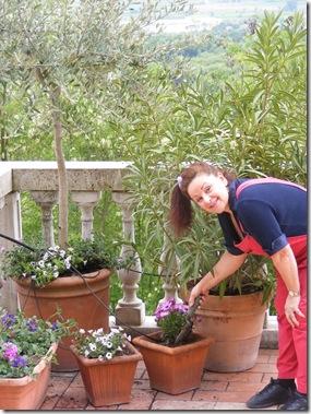 Dinah's garden 011