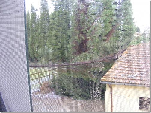 storm, jeannie visit 016