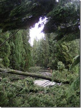 storm, jeannie visit 030
