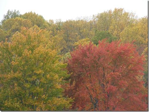 fall 2013 trip big disk 067