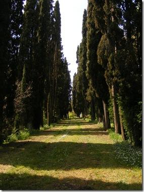 villa spring 2014 004