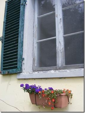 garden, guazzino may 14 109