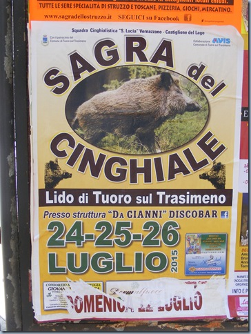 okra, posters, july 2015 010