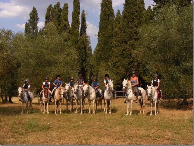 horse round up, august 2015 019